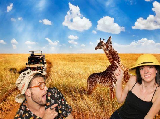 safari-3-min